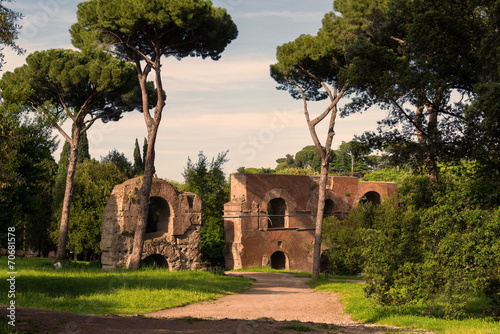 Photo  Roman ruins on the Palatine Hill in Rome