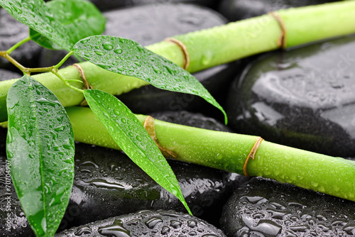 Mokre liście z bambusami na kamieniach bazaltowych