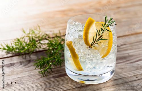 Fotografie, Obraz  Gin s citronem a ledem