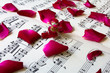 rose petals on sheet music, love song concept