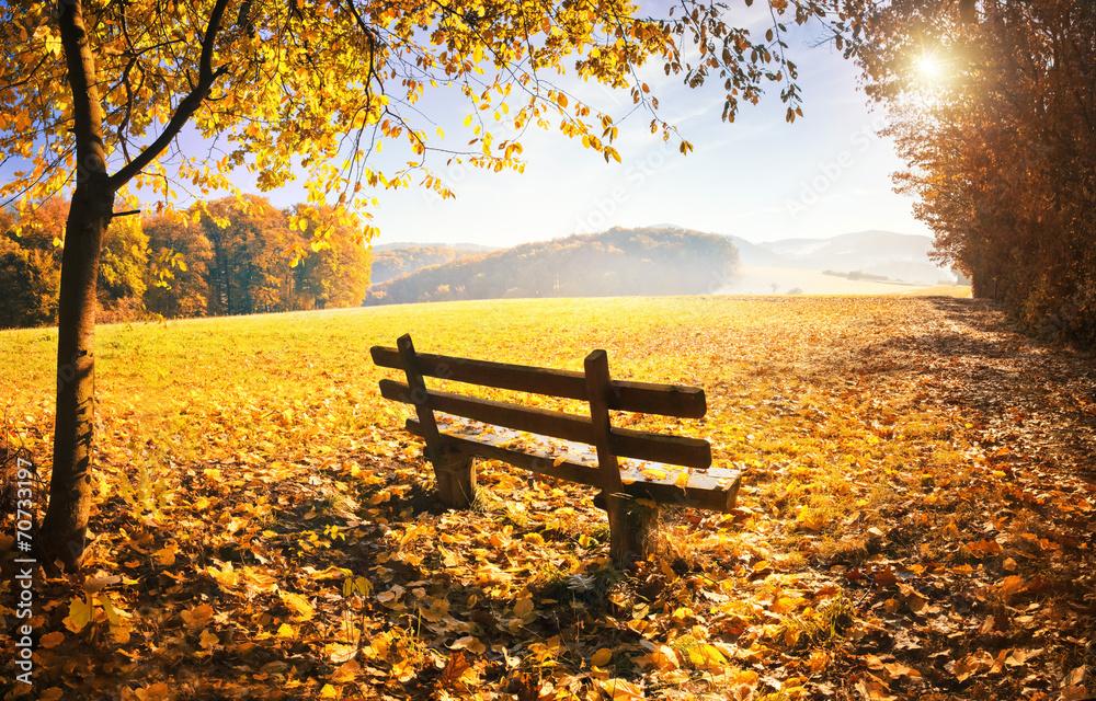 Fototapety, obrazy: Jesienny krajobraz ze słońcem