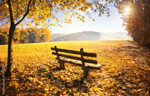 Obraz Jesienny krajobraz ze słońcem - fototapety do salonu