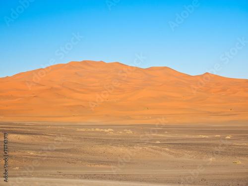 Foto op Aluminium Koraal サハラ砂漠