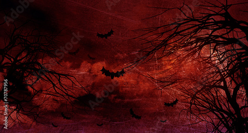 Garden Poster Brown Grunge Halloween background with spooky trees