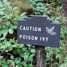 Mesa Verde National Park - Poi...