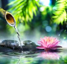 Zen Garden With Black Stones And Pink Waterlily