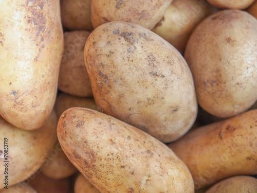 Fotografie, Obraz  Potato vegetable