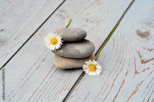 Canvas Prints Daisies Zen stenen met bloemen op oud hout.
