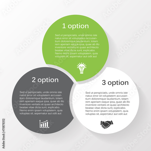 Vector circle infographic diagram 3 options Wall mural