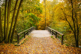 Fototapeta Bridge - Bridge in autumn forest