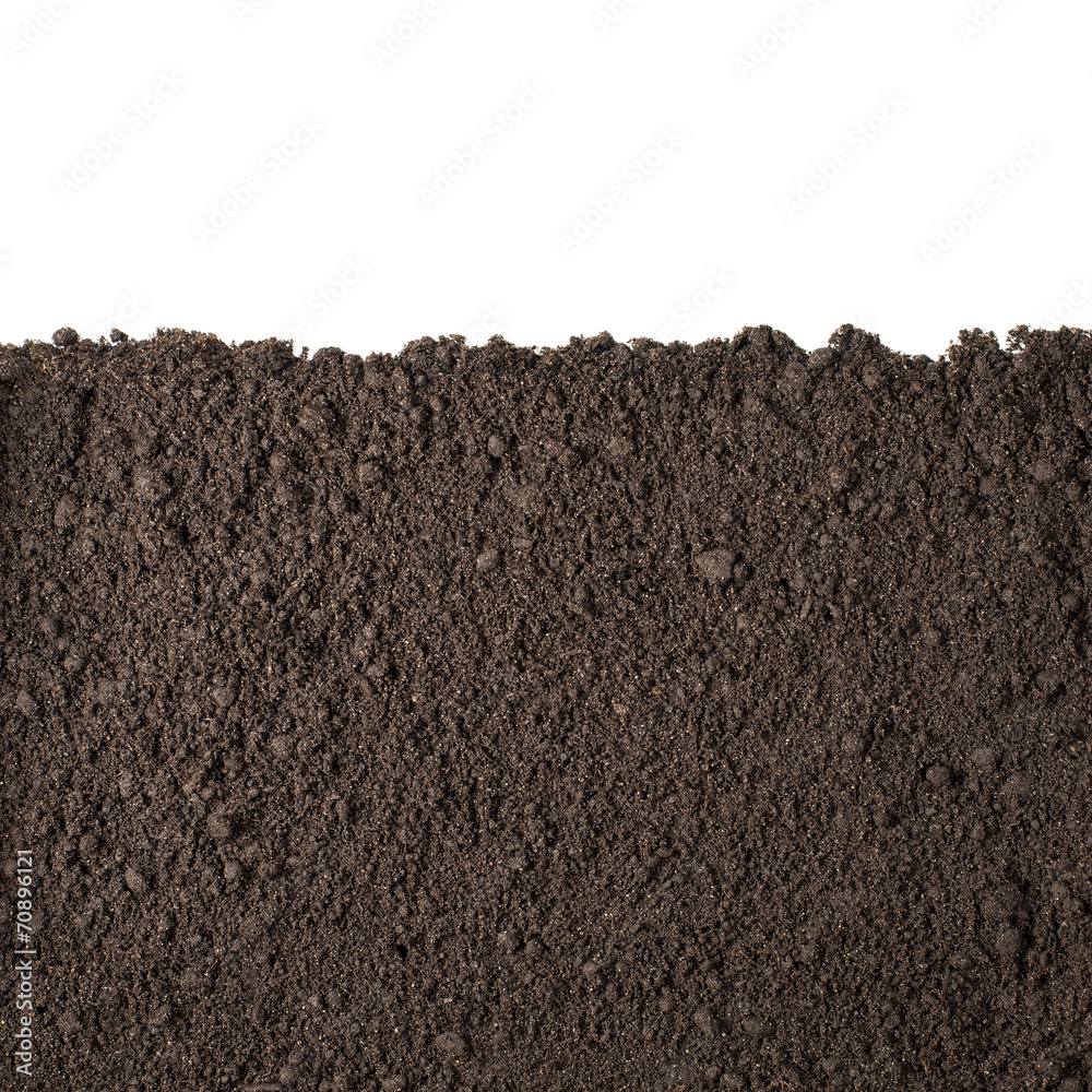 Fototapeta Soil section texture isolated on white