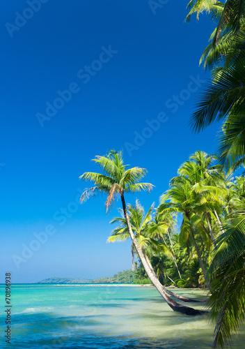 Deurstickers Strand Idyllic Island Green Getaway