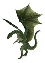 Landing Fantasy Dragon