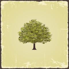 NaklejkaOld tree on vintage paper. Vector illustration