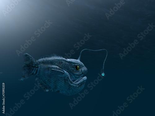 Photo ancient angler fish