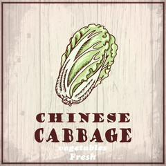 Fresh vegetable of a Chinese cabbage
