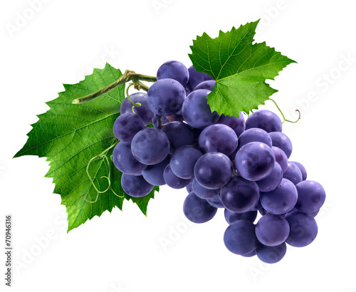 Fotografering Purple grapes bunch isolated on white background