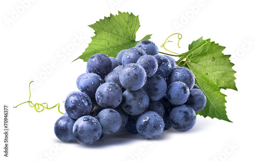 Blue wet grapes bunch isolated on white background Fototapet