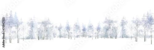 Fototapeta Vector winter scene with  forest background isolated on white. obraz