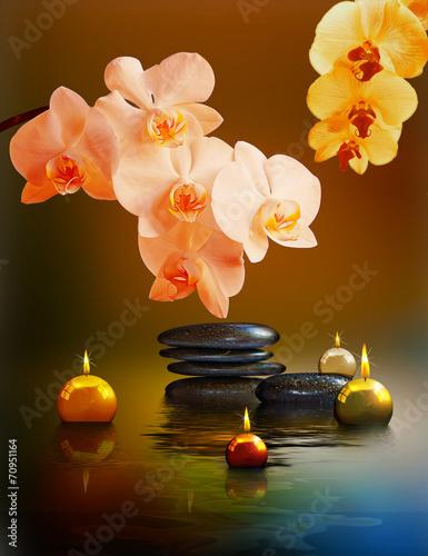 yin-i-yang-kwiaty-orchidei-z