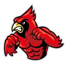 Cardinal Bird Mascot Show His ...