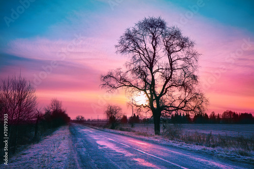 Printed kitchen splashbacks Purple Beautiful winter sunrise over road