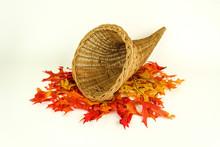 Autumn Harvest And Empty Cornu...