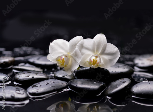 Photo sur Toile Spa Set of two white orchid with therapy stones