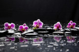 Fototapeta Kitchen - still life with black stone and five orchid