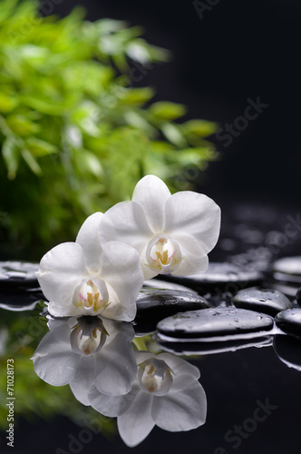 Spoed Fotobehang Spa Spa and aromatherapy concept shot