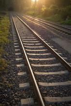 Railroad Tracks Leading In Tunnel