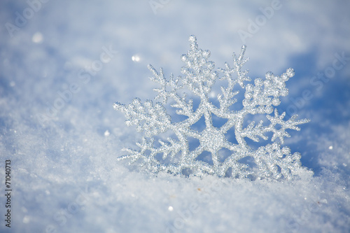 Foto-Leinwand ohne Rahmen - Winter background (von Tatyana Gladskih)
