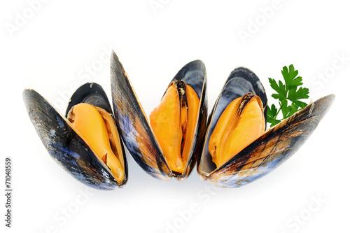 Canvas Prints Seafoods moules cuites en gros plan sur fond blanc