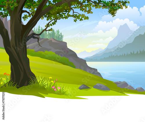 spokojna-bryla-wody-obok-zielonego-pola-drzew-i-m