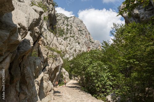 Fotografie, Obraz  Chemin dans le canyon de Paklenica