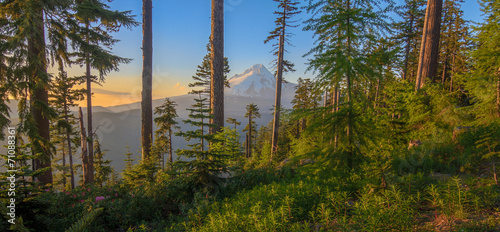 Fototapety, obrazy: Beautiful Vista of Mount Hood in Oregon, USA.