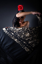 Young Flamenco Dancer In Beaut...