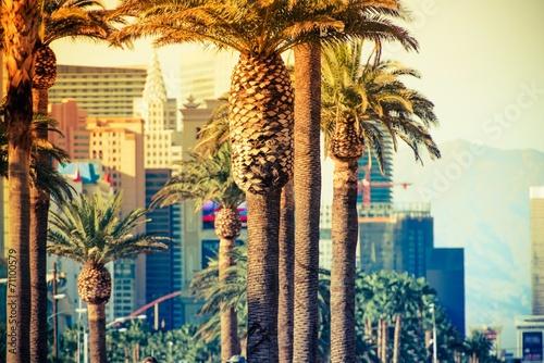 Photo  Las Vegas Strip Palms