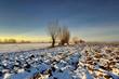 Krajobraz wiejski, zima