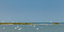 Panoramic Image Of The IJsselmeer Lake In The Netherlands
