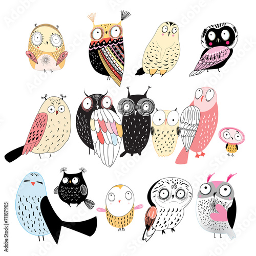 In de dag Uilen cartoon set of different owls