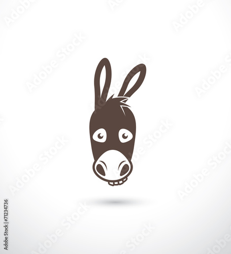 Fotomural Donkey
