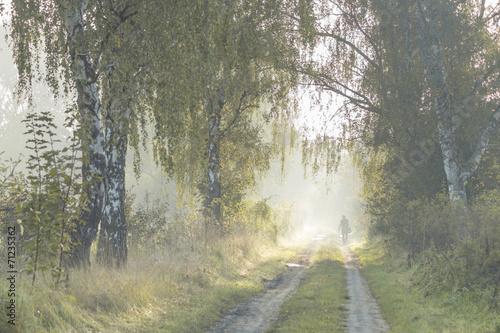 droga wiejska w świetle mglistego poranka - 71235362