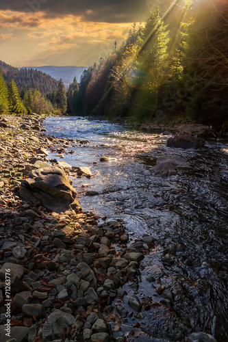 Printed kitchen splashbacks River forest river with stones and moss at sunset