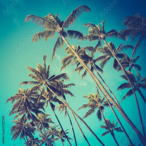 Plakat  Retro Diagonal Palm Trees Na Hawajach