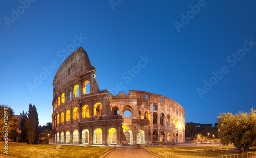 Garden Poster Rome Colosseum at night .Rome - Italy