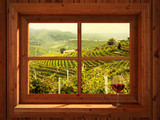 Vineyards - 71310373
