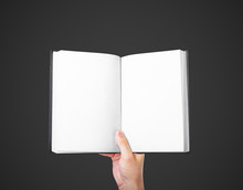 Hand Holding A Blank Book
