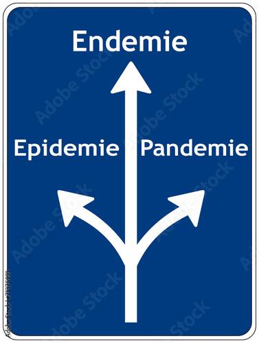 Epidemie Pandemie Endemie Unterschied