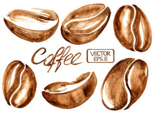 Watercolor Coffee Beans Icons